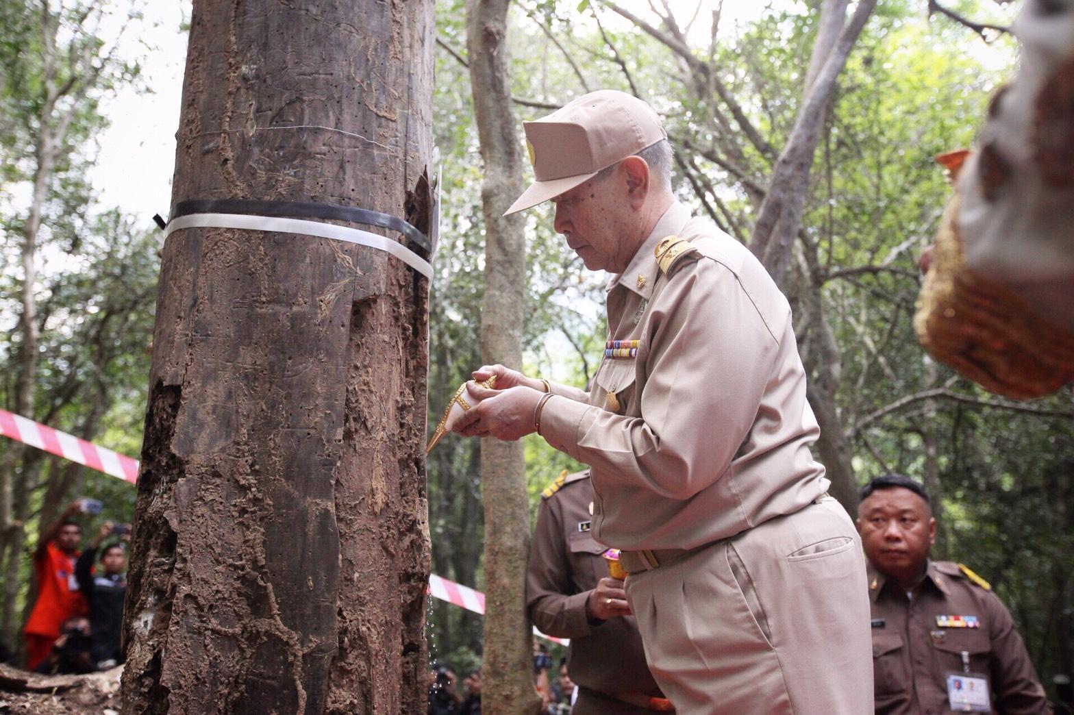 รองราชเลขาธิการ เป็นประธานในพิธีบวงสรวงตัดไม้จันทน์หอม เพื่อนำมาจัดสร้างพระบรมโกศจันทน์