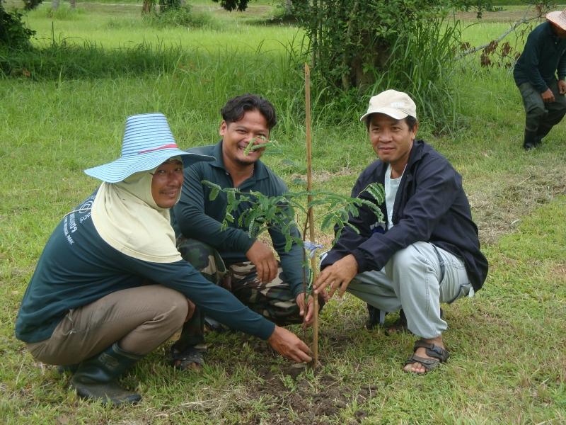 การทำกิจกรรมวันวิสาขบูชาและวันรักต้นไม้ประจำปีของชาติ อุทยานประวัติศาสตร์กำแพงเพชร